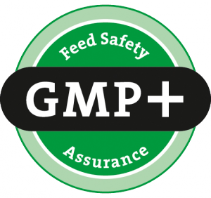logo_gmpplus-300x282